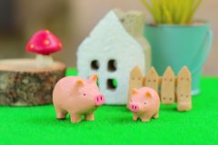 AIカメラで豚の行動を解析、エサの配合もテクノロジーで 勘や経験を「見える化」する畜産DX